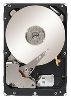 "Seagate Constellation ES.3 3.5"" 1Tb ST1000NM0033"