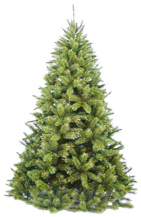 """Купить Triumph Tree Сосна """"Сказочная"""", 0.6 м. в интернет магазине. Цены, фото, описания, характеристики, отзывы, обзоры"""