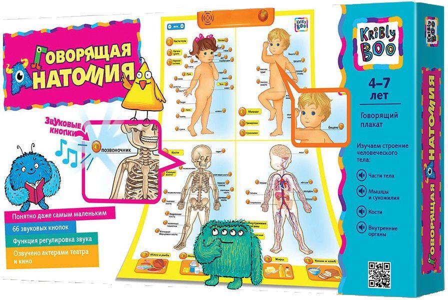 Купить Говорящий плакат Анатомия , Обучающие материалы и авторские методики для детей Kribly Boo, Обучающие игры