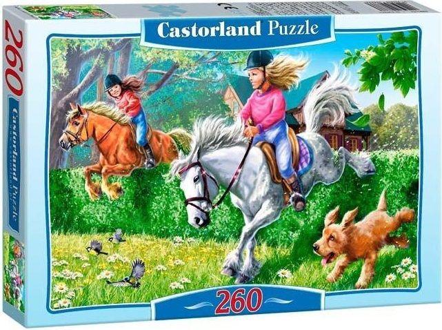 """Купить Castorland Пазл-midi """"Лошадиные скачки"""" в интернет магазине. Цены, фото, описания, характеристики, отзывы, обзоры"""