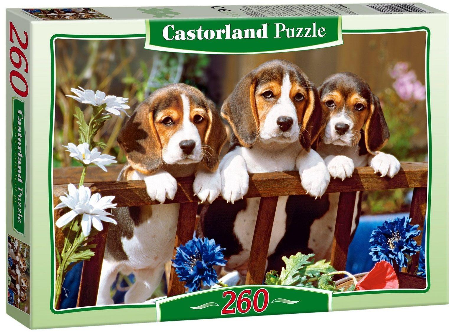 """Купить Пазл-midi """"Три щенка"""" <span class=""""brend-last-pos"""">Castorland</span> в интернет магазине. Цены, фото, описания, характеристики, отзывы, обзоры"""